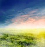 Magical landscape, fog Royalty Free Stock Photos