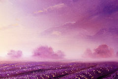 Magical lavender fields at dawn, oil painting on canvas. Magical lavender fields at dawn, oil painting on canvas Stock Image