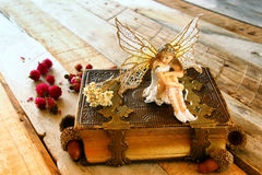 Magical little fairy in the forest next to old book Royalty Free Stock Photo