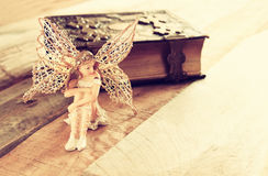 Magical little fairy in the forest next to old story book. Image of magical little fairy in the forest next to old story book. vintage filtered Royalty Free Stock Photography
