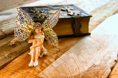 Magical little fairy in the forest next to old story book Royalty Free Stock Photos