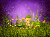 Magical little pond Royalty Free Stock Photography