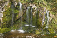 Magical little waterfall at the Rock Close, Blarney Castle Royalty Free Stock Photos