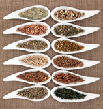 Magical and Mediicinal Herbs Royalty Free Stock Images