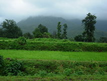 Magical Monsoon Landscape. Cool Green Landscape In Monsoon Stock Photos