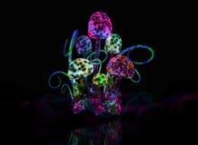 Magical mushrooms Stock Image