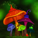 Magical mushrooms Stock Photos