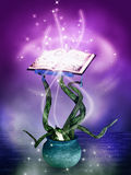 Magical mystery book. Fantasy illustration of an alchimist's book Stock Image