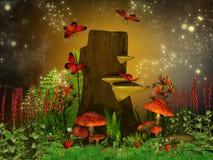 magical natt Arkivbild