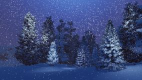 Magical night in a snowy spruce forest Royalty Free Stock Image