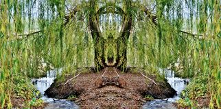 Magical place. Landscape with magical Willow and little creek Royalty Free Stock Photos