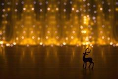 Magical Reindeer. Christmas reindeer with golden backdrop,beautiful bokeh Royalty Free Stock Photos