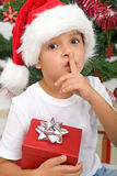 The magical secret of christmas Royalty Free Stock Photo
