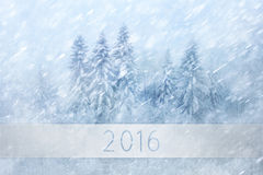 Magical snowy forest New Year greeting card landscape background Royalty Free Stock Photo