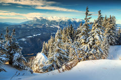 Magical snowy winter landscape,Poiana Brasov,Carpathians,Transylvania,Romania,Europe Stock Image