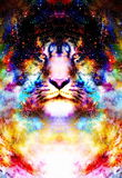 Magical space tiger, multicolor computer graphic collage. Magical space tiger, multicolor computer graphic collage vector illustration