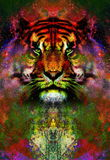 Magical space tiger, multicolor computer graphic collage. Space fire. royalty free illustration