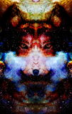 Magical space wolf, multicolor computer graphic collage.  stock illustration