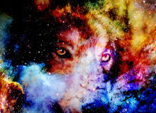 Magical space wolf, multicolor computer graphic collage.  royalty free illustration