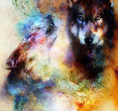 Magical space wolf, painting and graphic collage. Magical space wolf, painting and graphic collage Stock Photos