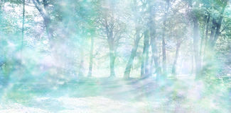 Magical Spiritual Woodland Energy Background. Misty pastel blue green colored woodland scene with random streams of gentle sparkling light stock images