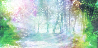 Magical Spiritual Woodland Energy. Rainbow colored woodland scene with streams of rainbow colored sparkling light royalty free stock photos