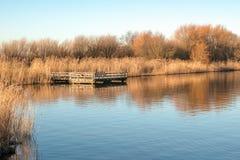A magical sunday morning at the lake stock photo