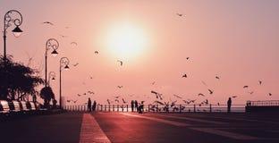 Magical sunrise on the Black Sea coast Stock Photos