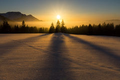 Magical sunset at Christmas Eve. Dreamlike winter sunset with beautiful shadow play of three tree Stock Photography