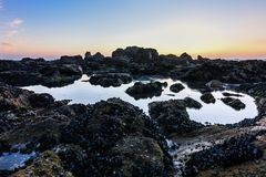 Magical sunset on the rocky beach in Porto, Portugal, Europe stock photos