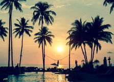 Magical sunset on the tropical coast in South-East Asia. Travel. Stock Images