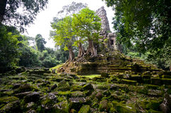 Magical Temple in Cambodia Stock Images
