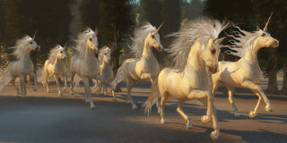 Magical Unicorn Forest Stock Photos