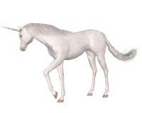 Magical Unicorn - standing Stock Photos