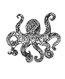 Magical vector octopus royalty free illustration
