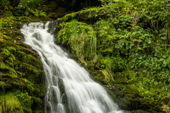 Magical waterfall Royalty Free Stock Image