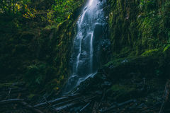 A magical waterfall in Oregon Royalty Free Stock Images