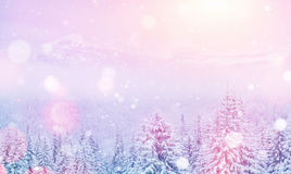 Magical winter landscape, background with some soft highlights a stock photography