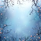Magical winter nature background. Tree branches decorated with warm lights. Snow on blue blurred empty background. Glitter on bran Stock Photography