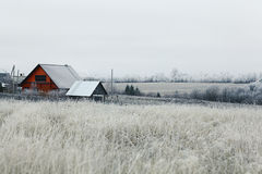 Magical winter snow Royalty Free Stock Images
