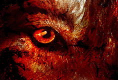 Magical wolfs eye, computer graphic collage closeup view. Royalty Free Stock Image