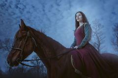 Magical woman on a horse. Magic woman on a horse in the style of dark Royalty Free Stock Image