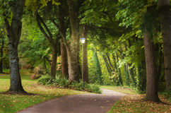 Magical woodland path. A glowing lampost at the beginning of a fantasy woodland path beckons the viewer to enter on an adventure filled with new beginnings and Stock Photography