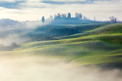 Magically Foggy Valley in the morning landscape Stock Photo