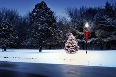 Magicamente a árvore do Lit incandesce brilhantemente na manhã de Natal coberto de neve Fotografia de Stock Royalty Free
