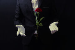 Magician floating rose Stock Photo