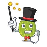 Magician gooseberry mascot cartoon style. Vector illustration Stock Photos