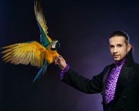 Magician man in stage costume Royalty Free Stock Photo