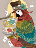 Magician parrot adult coloring page Royalty Free Stock Images