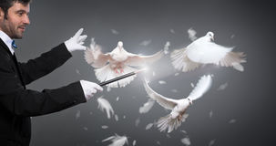 Magician performs the trick with a pigeon Royalty Free Stock Photography